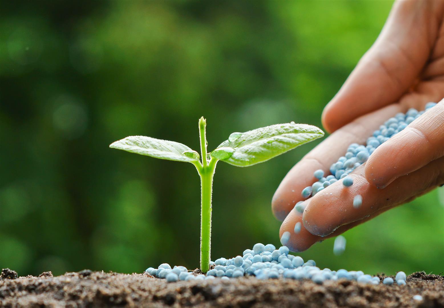 Entrega de fertilizantes no Brasil tem recorde mensal; analista vê alta de 7% no Ano